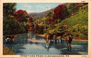 Pennsylvania Greetings From Susquehanna 1944 Curteich
