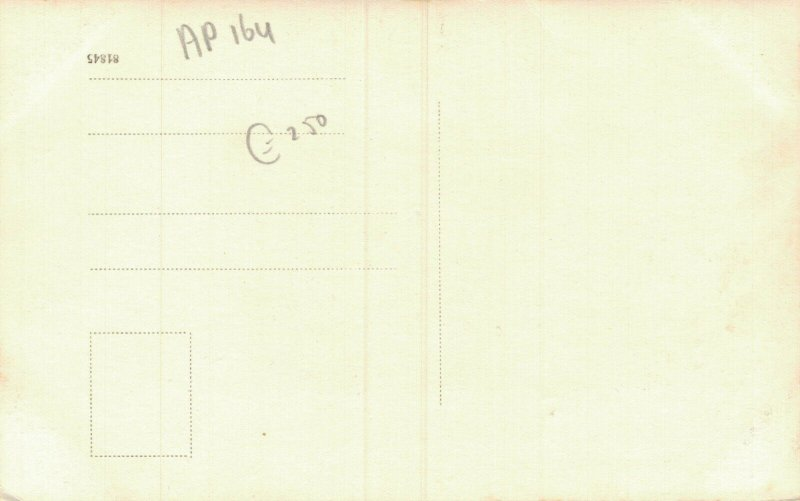 Austria Pertisau Achensee RPPC 05.36