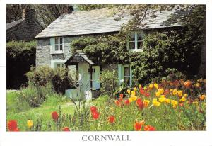Harlyn Cornwall Multi View Postcard, Ancient Cottage, Flowers, Garden 31E