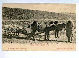 170861 Caucasus BATUMI Batum Mountain arba Vintage CHERTKOV PC