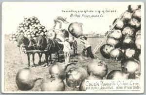 VAN BUREN AR ONIONS EXAGGERATED VINTAGE REAL PHOTO POSTCARD RPPC  farming