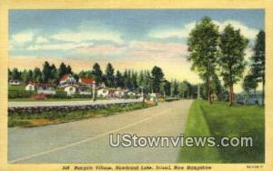 Bungalow Village, Newfound Lake Bristol NH Unused