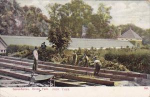 New York Broux Park Green House 1909