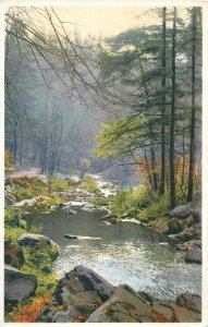 Photochrom early postcard landscape rural life tree forest mountain river