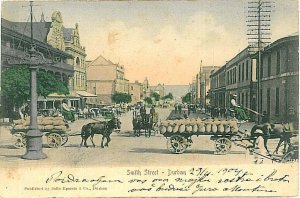 VINTAGE POSTCARD: SOUTH AFRICA - Durban 1904