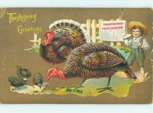 Pre-Linen thanksgiving BOY CHASES TURKEYS WITH A STICK HQ7388