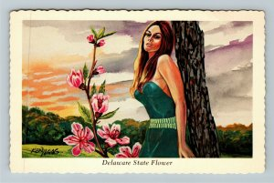 DE- Delaware, State Flower, Peach Blossom, Ken Haag, Chrome Postcard