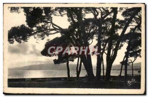 Old Postcard Juan les Pins Back Day on Pinede