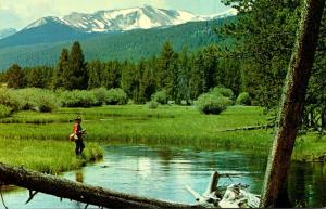 Fishing On Miner's Creek Jackson Montana