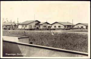 suriname, WAGENINGEN, Panorama Houses (1950s) RPPC