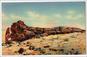 Nez by the Log, Petrified Forest, AZ