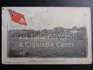 c1905 UB Canada: Sydney, Cape Breton, from the Harbor