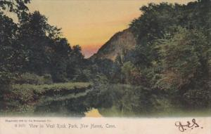 Connecticut New Haven View In West Rock Park 1908 Rotograph
