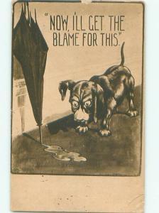 Pre-Linen DOG WORRIED HE WILL GET BLAMED FOR RAINWATER AC5229