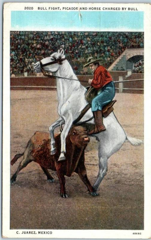 1926 Ciudad Juarez Mexico Postcard BULL FIGHT Picador & Horse Charged by Bull