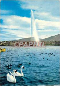 Modern Postcard Geneve The water jet and swans