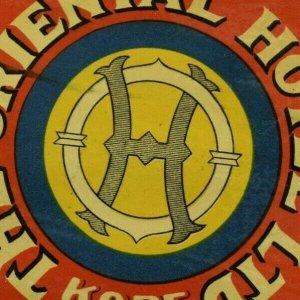 1920's The Oriental Hotel Ltd Kobe Japan Luggage Label Vintage Original #2 E33
