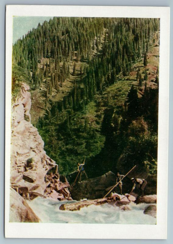 1957 Kyrgyz Kyrgyzstan Timber rafting Alloy Mountain Russian Soviet Postcard