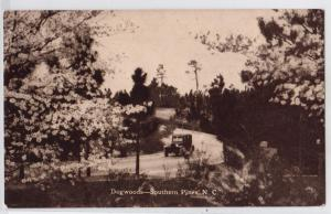 Dogwoods, Southern Pines NC