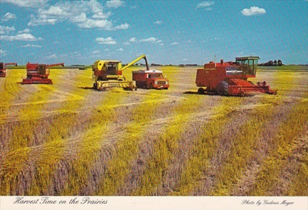 Canada Saskatchewan Harvest Time On The Prairies