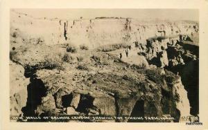 Andrews 1940s Walls Salmon Canyon Sinking Farm Idaho RPPC Real Photo 9497