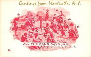 Greetings from - Monticello, New York