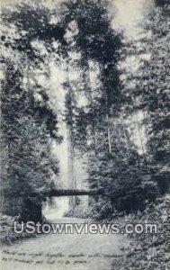 Woodland Park - Seattle, Washington