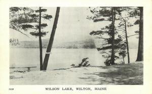 Wilton, Maine, ME, Wilson Lake, Unused Antique Vintage Postcard c9625