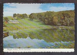 Maggie Valley NC Postcard BIN