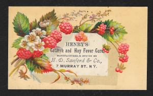 VICTORIAN TRADE CARD Henry's Catarrh Hay Fever Cure