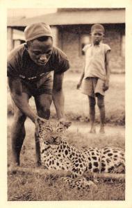 Congo Belge DRC Leopard Inoffensif! Harmless leopard!
