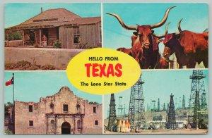 Texas~Lone Star Longhorn Greetings~Standard Chrome Postcard
