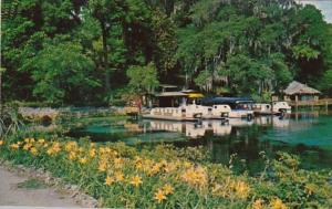 Florida Dunnellon Boat Docks At Rainbow Springs