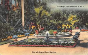 B.W.I. Jamaica Greetings, The Lily Pond, Hope Gardens 1956