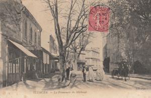TLEMCEN, Algeria, PU-1907; La Promenade Du Mechouar