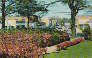 South Carolina Hampton Lee Avenue Looking East