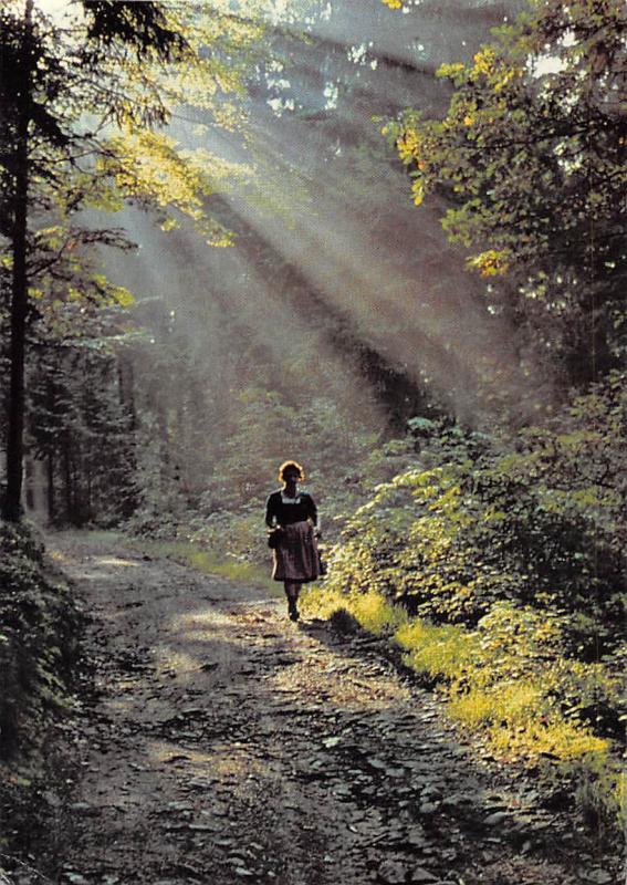 Wald Forest Sunshine Road Path Promenade Woman Walking Foto Hermann Kolar