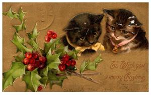 Cats ,christmas