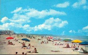 Virginia Virginia Beach Sunbathers Along The Beach
