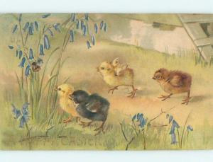 Pre-Linen easter RARE BLACK CHICK BESIDE YELLOW CHICKS HL0769