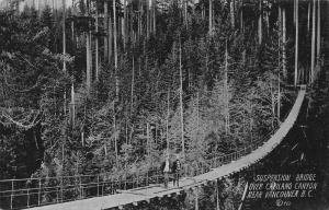 Canada Suspension Bridge Over Capilano Canyon near Vancouver Postcard