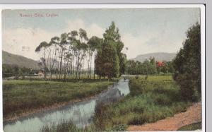 Sri Lanka / Ceylon; Nuwara Eliya PPC, Colombo 1910 by Plate & Co
