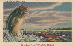 TENAHA , Texas , 1955 ; Fishing Greetings