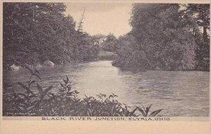 Ohio Elyria Black River Junction Albertype