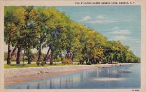 The Willows Along Seneca Lake Geneva New York