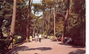 England The Pine Walk, Bournemouth 1966