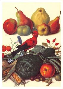 Fruchtestilleben mit Flaschenkurbis, Johann Jakob Walther Fruits Bird