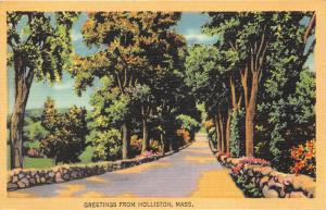 Holliston Massachusetts~Quiet Country Road Scene~Trees-Flowers~1940s Linen