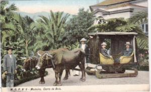 Portugal Madeira Carro de Bois Typical Ox Cart