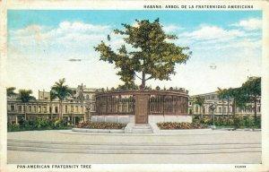 CUBA Habana Arbol de la Fraternidad Americana Pan American Fraternity Tree 03.57